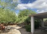 Backyard 223