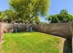 26-26 Backyard
